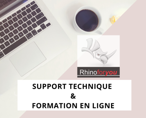 formation rhino en ligne